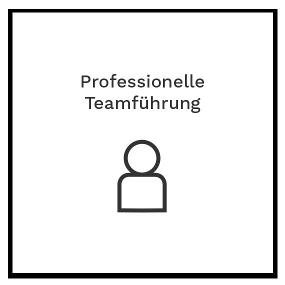 Professionelle Teamführung